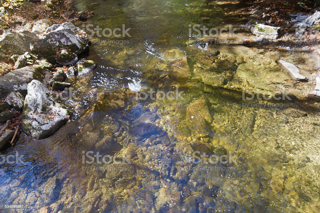 Clear Mountain Stream Close Up stock photo