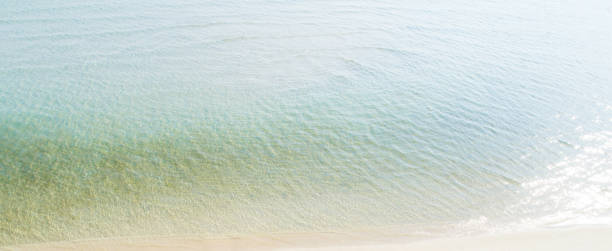 Clear seawater at the beach in summer picture id1215705415?b=1&k=6&m=1215705415&s=612x612&w=0&h=vzplkijjlppb tcp8uqzt8 6021rfef6rtaicmkw1ve=