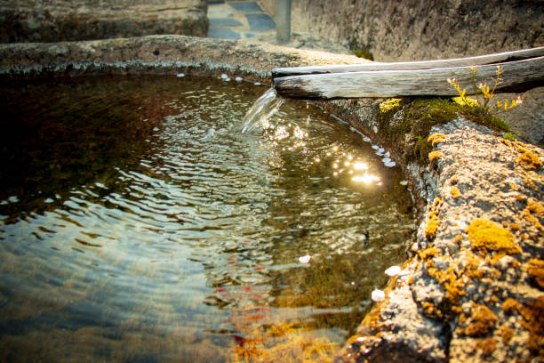 Clear spring water. stock photo