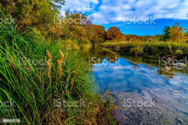 Photo of Clear Stream in Texas with Fall Foliage.