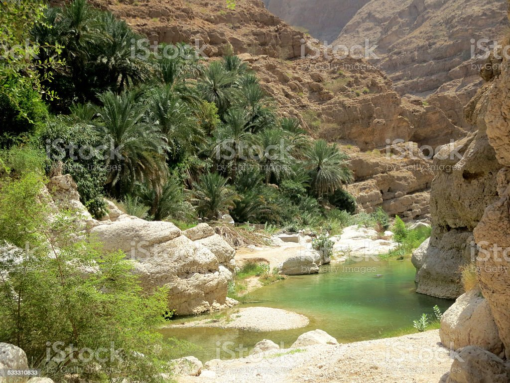 Clear water in a pittoresque Wadi in Oman. stock photo