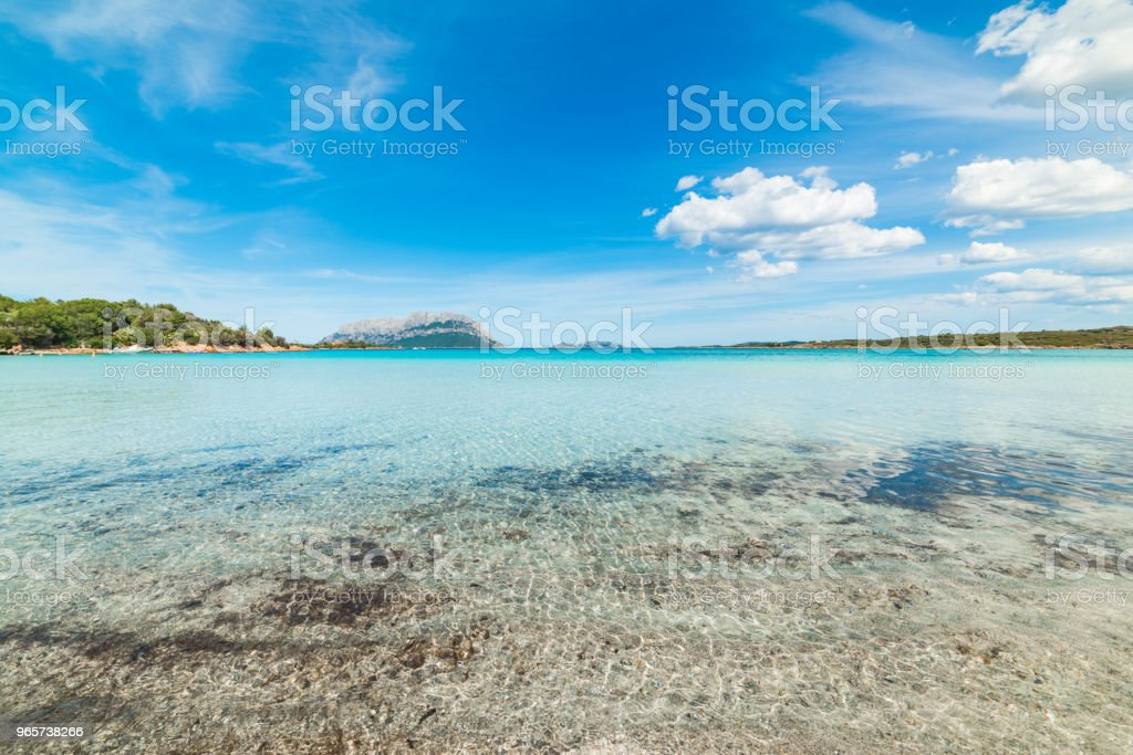 Clear water in Porto Istana shore in Costa Smeralda - Royalty-free Beach Stock Photo