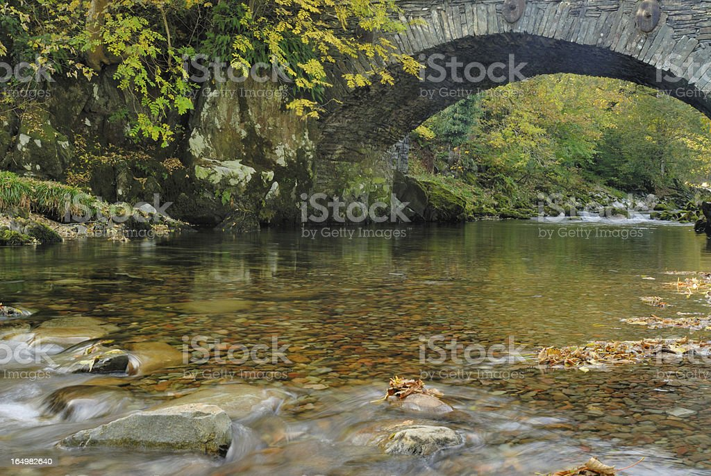 Clear Water Stream royalty-free stock photo
