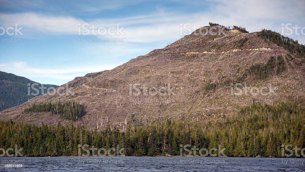 Clearcut Mountain stock photo