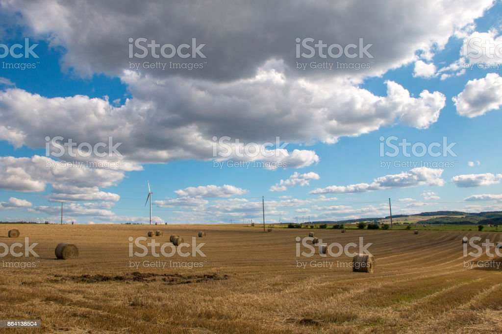 Cleared Field royalty-free stock photo