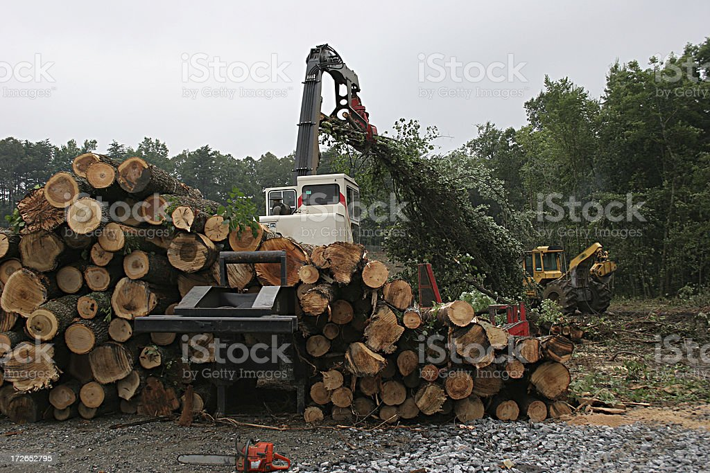 Clearing the Land 3 royalty-free stock photo