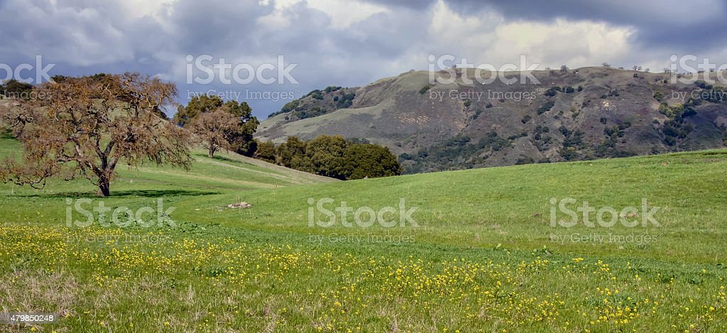 Clearing Winter Storm, California Central Valley stock photo