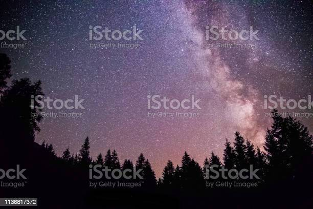 Photo of Clearly milky way galaxy at dark night, silhouette of trees