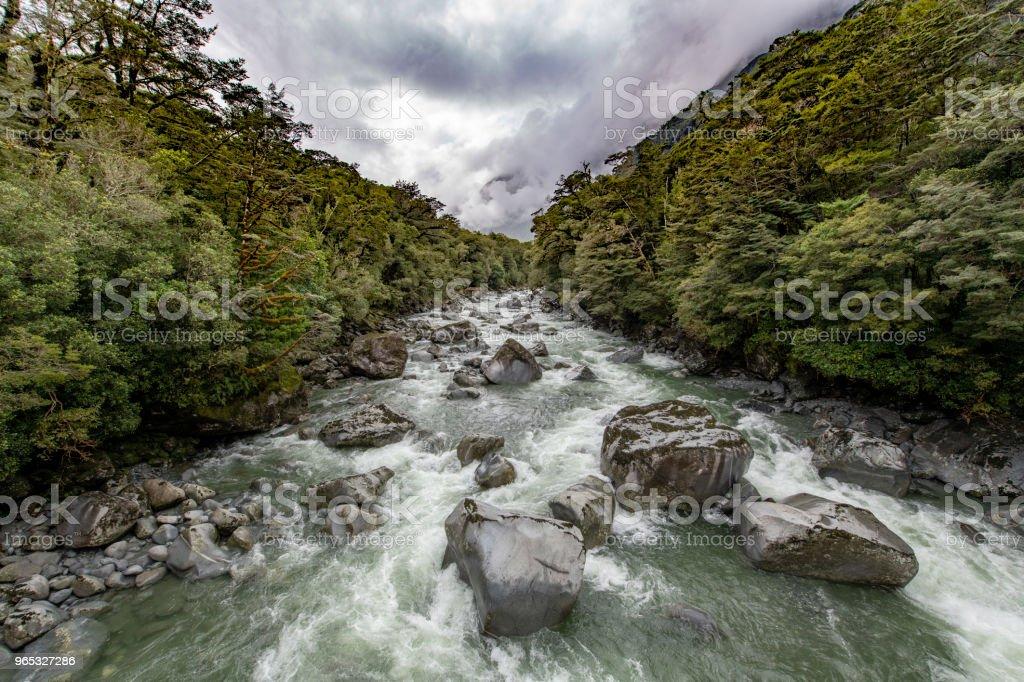 Cleddau River, Milford Sound, New Zealand zbiór zdjęć royalty-free