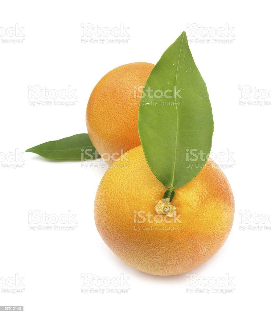 Clementines mandarin oranges royalty-free stock photo