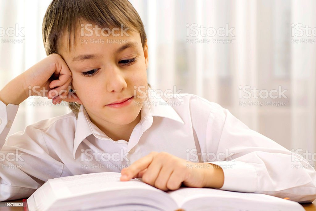 Clever boy learns lessons at home stock photo
