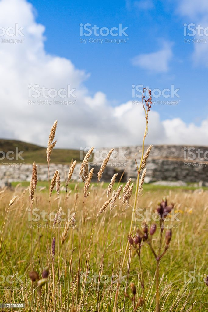 Clickimin Broch stock photo
