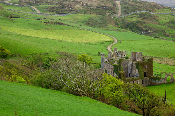 Clifden Castle in Northern Ireland stock photo