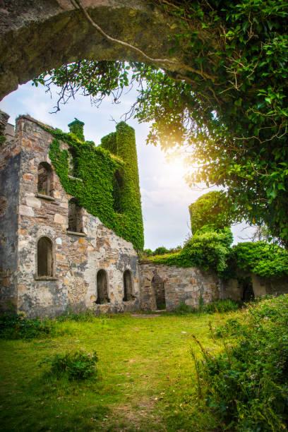 Clifden Castle, Burgruine auf der Sky Road – Foto