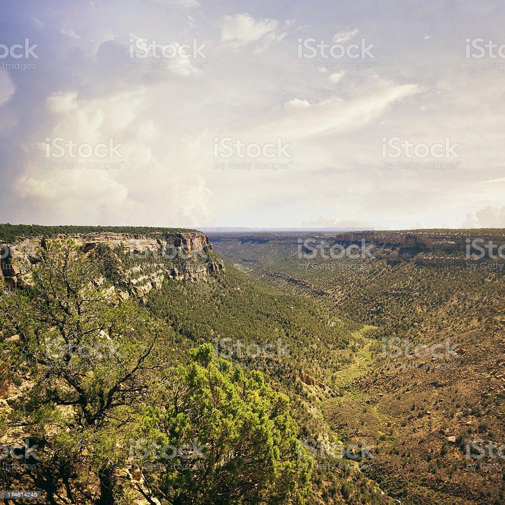 Cliff Canyon - Mesa Verde National Park, Colorado royalty-free stock photo