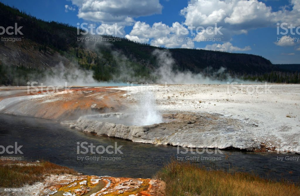 Cliff Geyser erupting next to Iron Spring Creek in Black Sand Geyser Basin in Yellowstone National Park in Wyoming USA stock photo