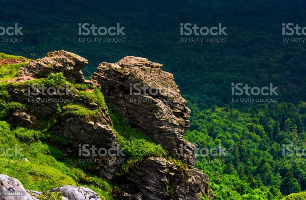 cliff in a shape of a tiger head stock photo