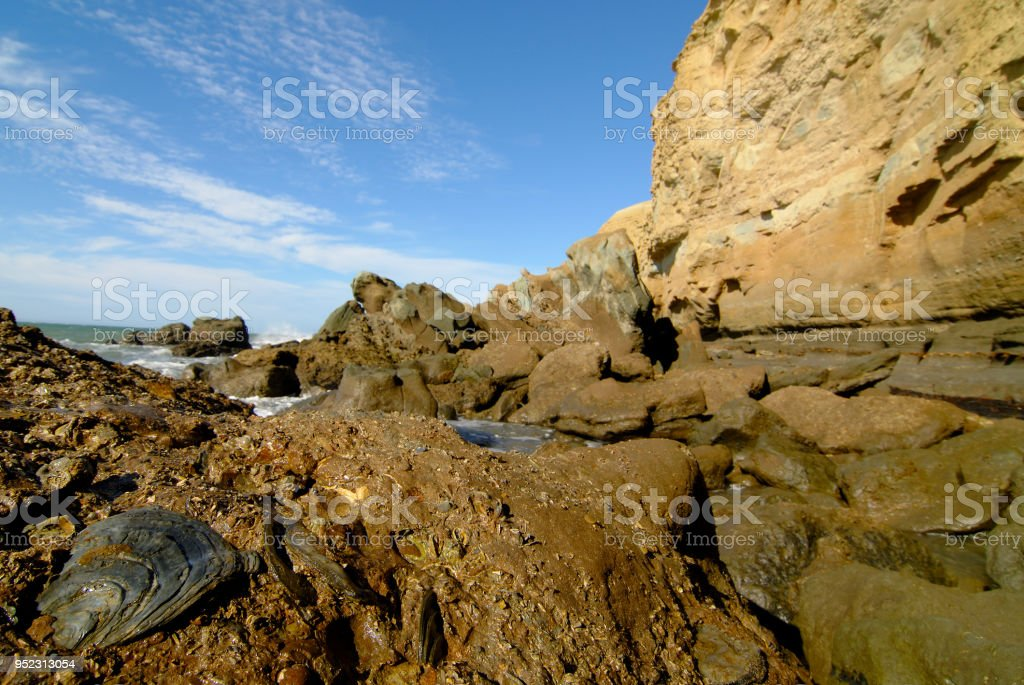 Cliff in Coastal Patagonia With Fossil Oysters stock photo