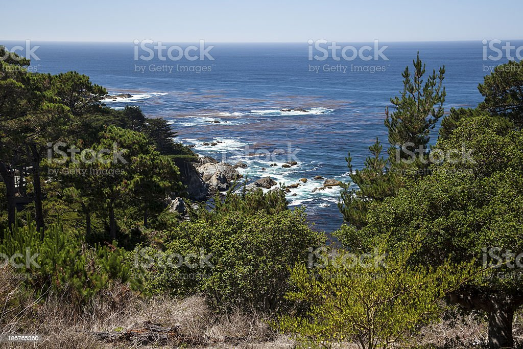 Cliff overlooking Big Sur, California royalty-free stock photo