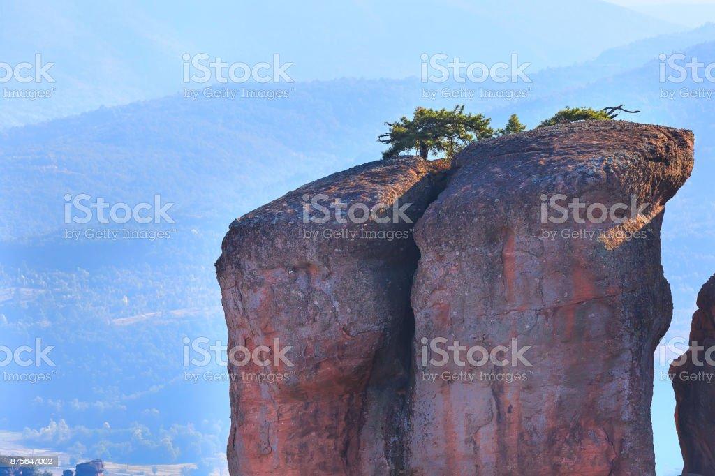 Cliff rocks close up, Belogradchik, Bulgaria stock photo