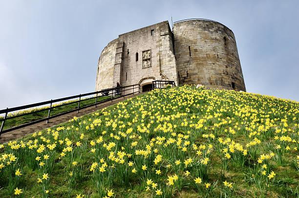 Der Cliffords Tower mit Narzissen Frühling – Foto