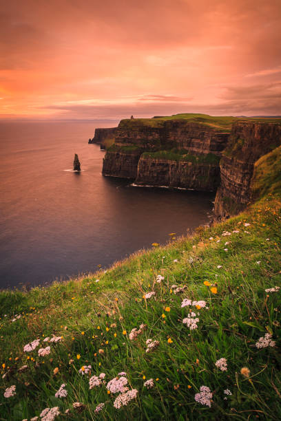 Cliffs of Moher at Dusk - Clare, Ireland stock photo