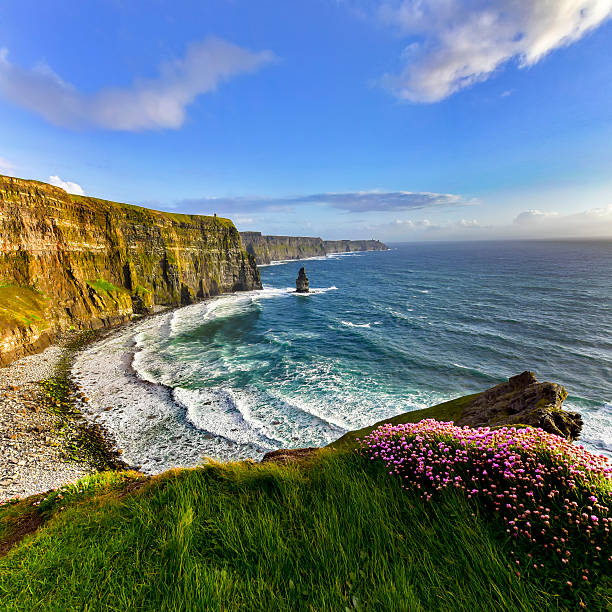 cliffs of moher at sunset, co. clare, ireland - cliffs of moher stock pictures, royalty-free photos & images