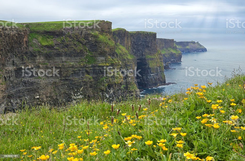 Cliffs of Moher in Spring royalty-free stock photo