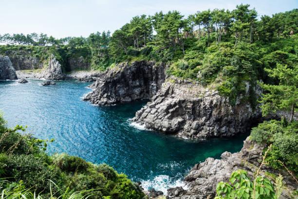 Cliffs surrounded by forest along the coastline of Seogwipo, Jeju Island, Korea Cliffs surrounded by green forest along the coastline of Seogwipo, Jeju Island, Korea seogwipo stock pictures, royalty-free photos & images
