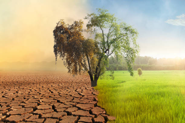 Climate change and Environmental damage stock photo