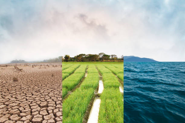 Climate change and World environmental stock photo