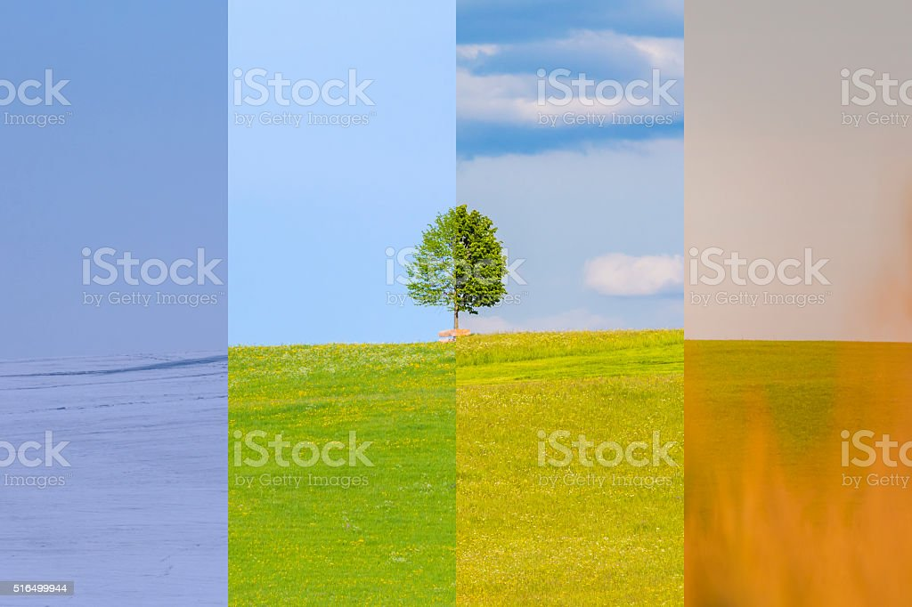 Climate change winter spring summer fall time over the year stock photo
