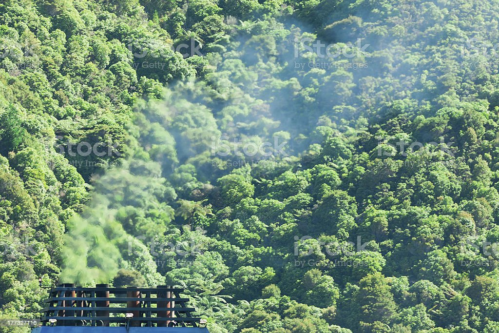 Climate gas pollution concept, smoke and forest stock photo