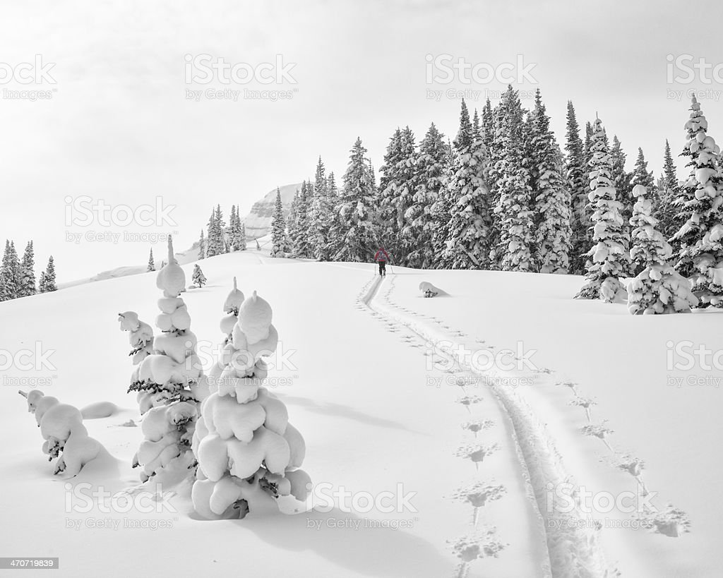 Climb in fresh snow stock photo