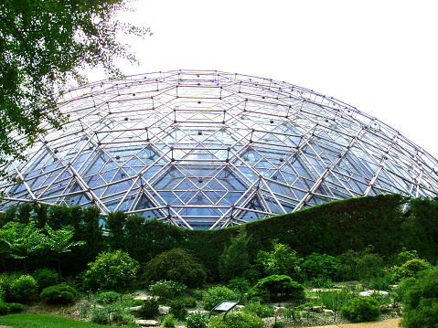 Climbatron St Louis Botanical Garden Stock Photo Download Image