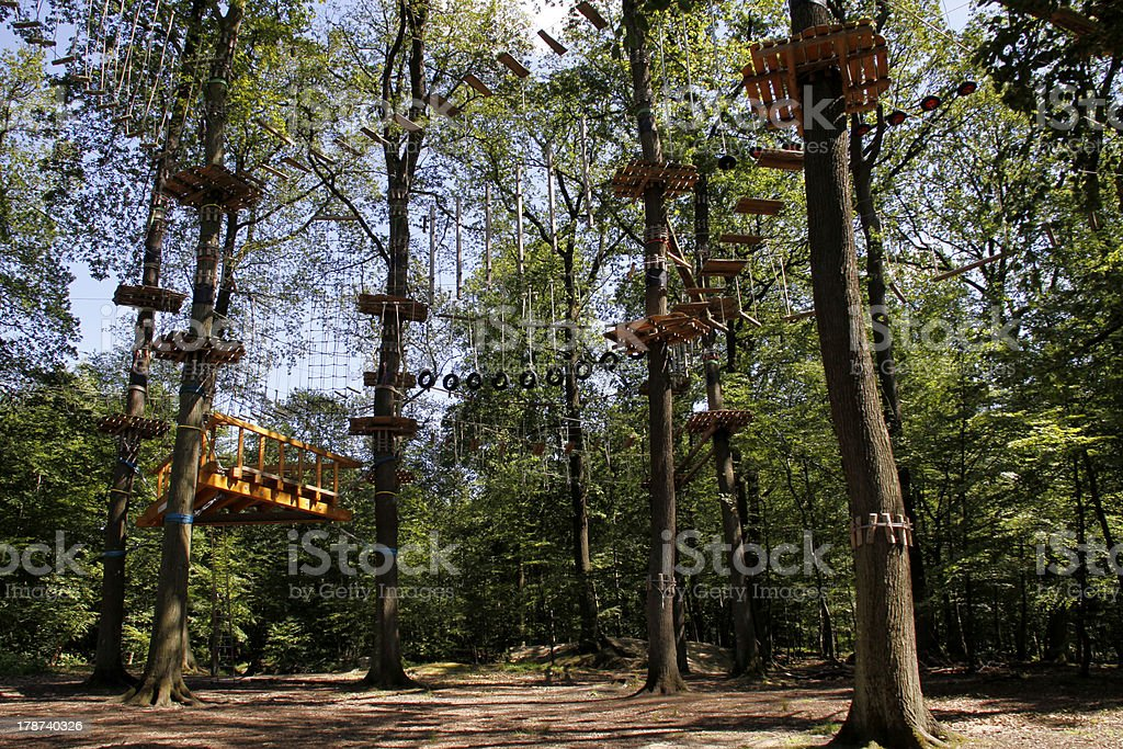 Climbing forest on the Kluet (Hamelin) stock photo