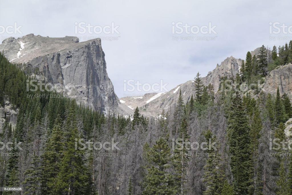 Climbing Mountain Hallett Peak stock photo