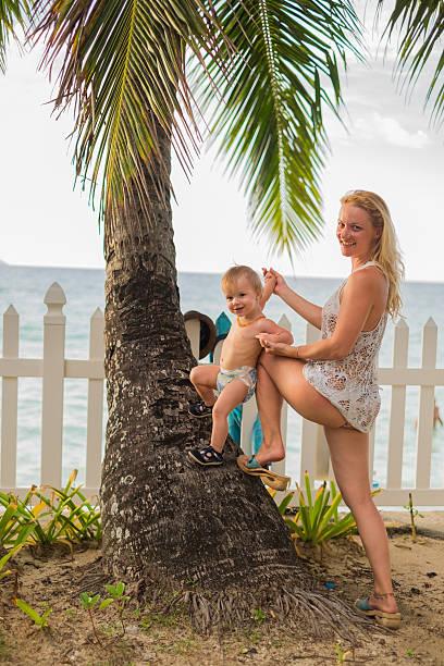 klettern auf dem palm baum - ferienpark stock-fotos und bilder
