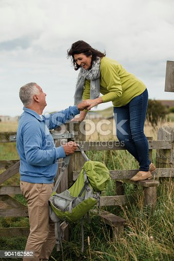 istock Climbing Over a Country Style 904162582