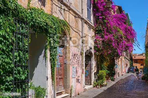 Rome, Italy, June 22 -- Climbing plants and bougainvillea adorn the facades of ancient buildings in an alley in Trastevere, one of the most loved and visited neighborhoods by tourists who come to Rome. Image in High Definition format.