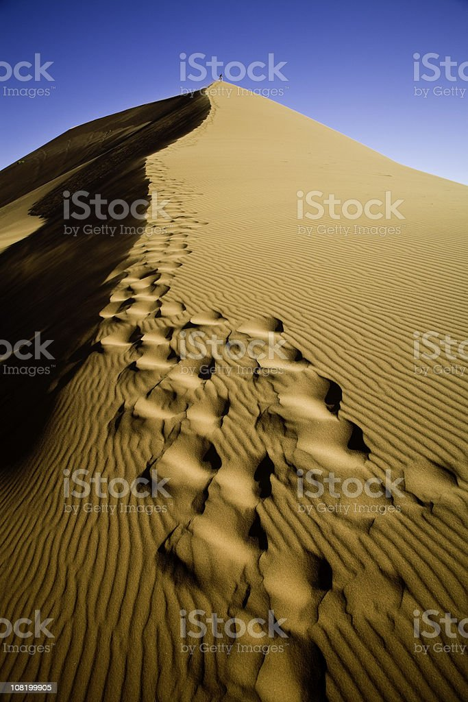 Climbing up the Sand Dune royalty-free stock photo
