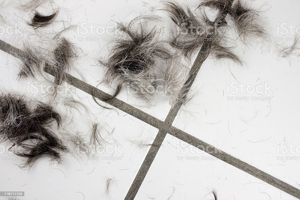 Clips of hair from a haircut stock photo