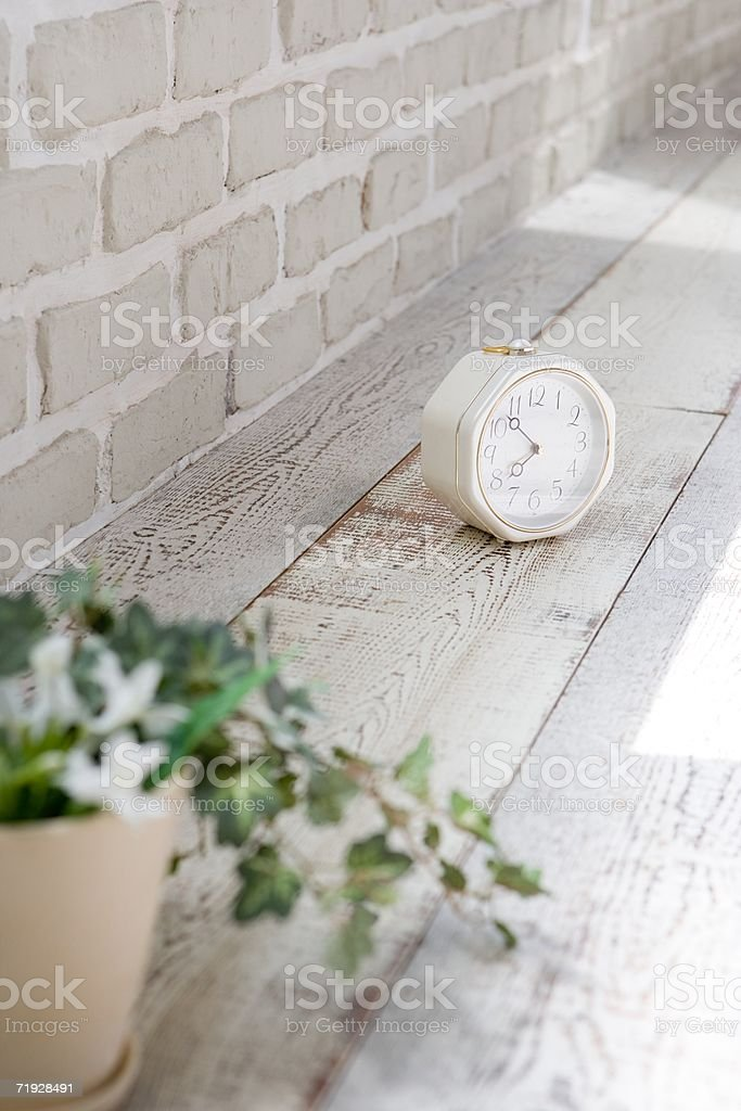 Clock and houseplant on apartment floor royalty-free stock photo