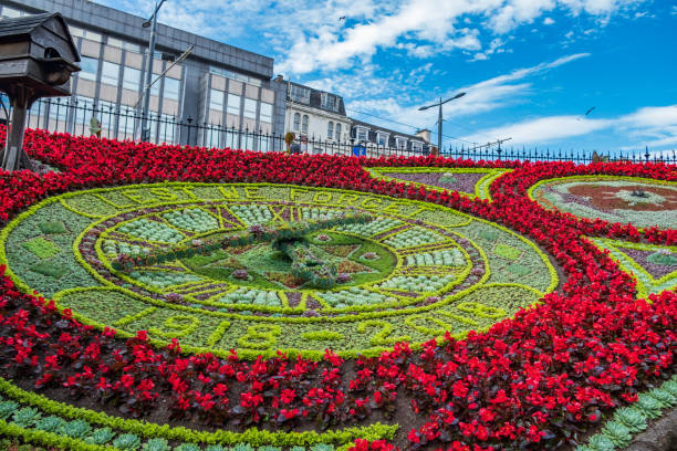 uhr aus blumen am princes straßen gardens, edinburgh, schottland. uk - blumenuhr stock-fotos und bilder