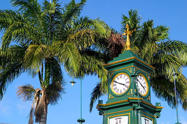 Clock Tower and Palm stock photo