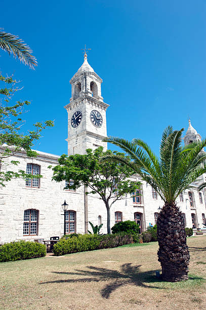 Clock tower and palm tree stock photo