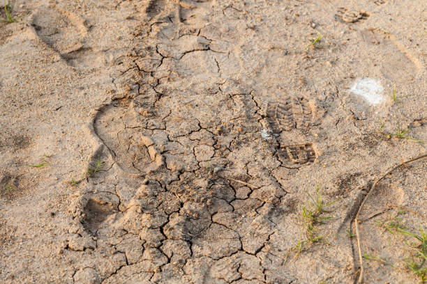 A clod broken dry. A clod broken dry. anhydrous stock pictures, royalty-free photos & images