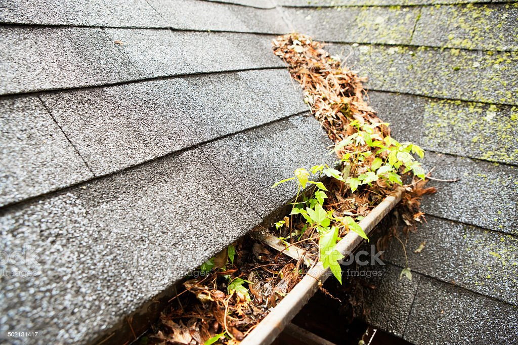 Clogged and Dirty Copper Rain Gutter stock photo