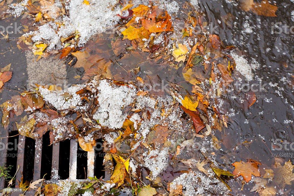 Clogged sewer blocks rainwater runoff stock photo