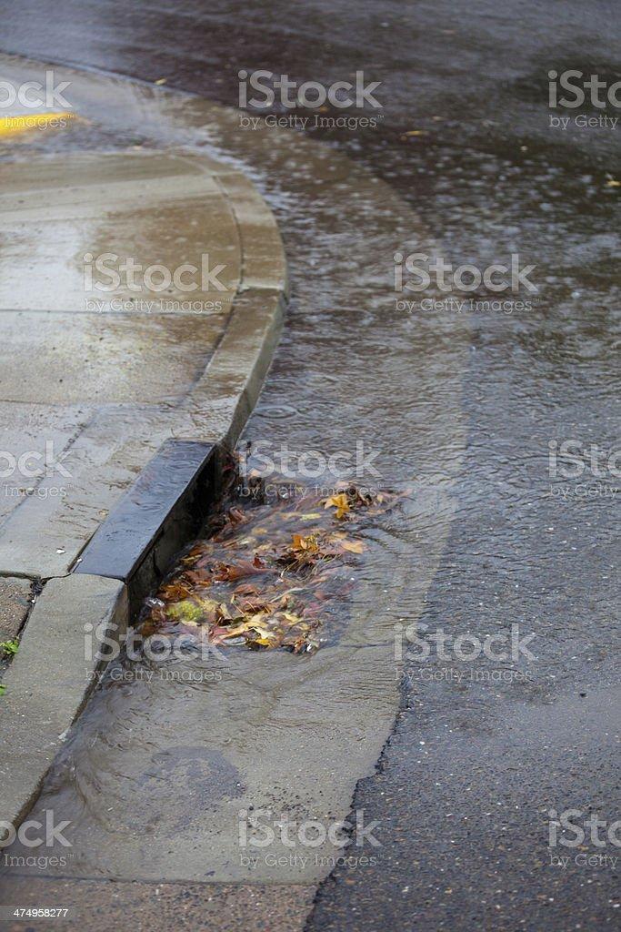 Clogged Storm Drain stock photo